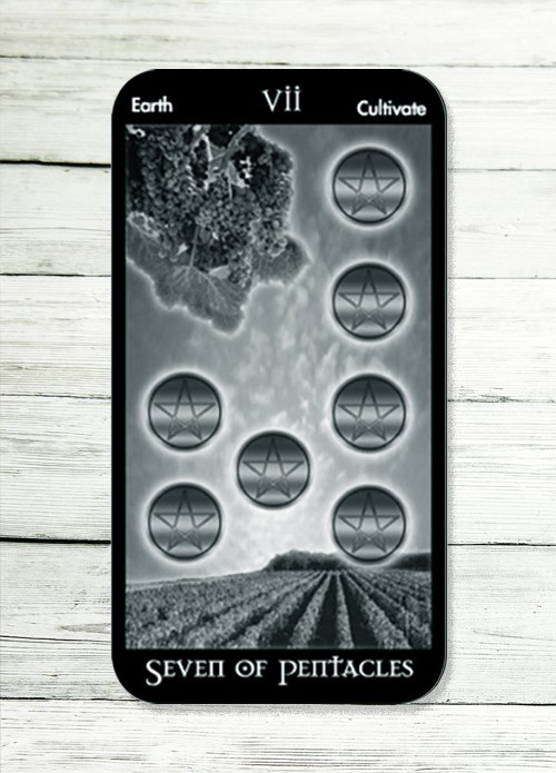 seven of pentacles tarot meaning